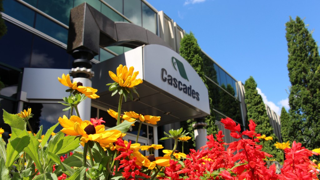 Fiber giant Cascades Q1 results show operating income down by 50%, reflects pandemic effects