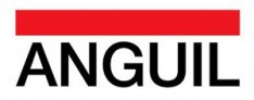 Anguil Environmental Systems, Inc. Logo