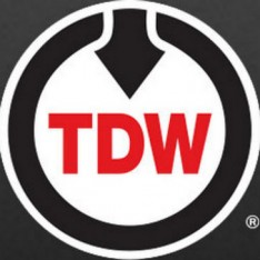 T.D. Williamson Logo