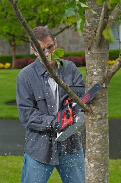 London Ontario's LS Training now offers online chainsaw safety training