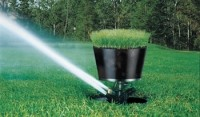 Sprinkler with a built-in natural turf sod cup