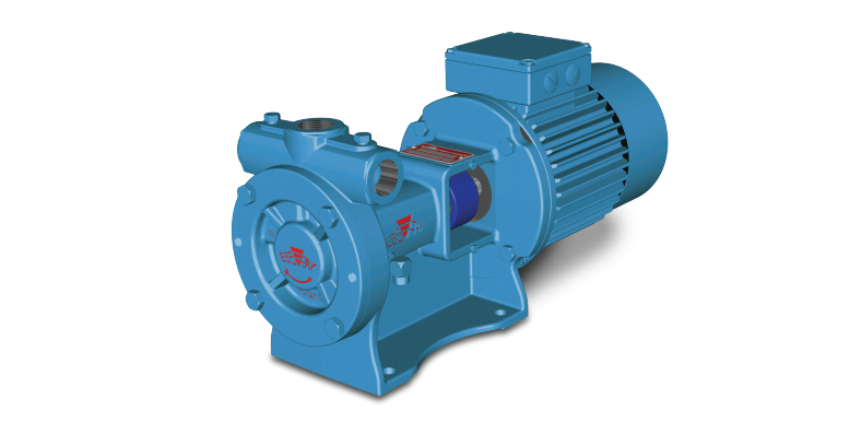 Blackmer - RC 20/25 Regenative Turbine Pumps