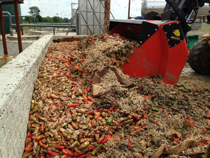Napoleon Biogas Using ALLU DL Screener Crusher for Organic Materials.