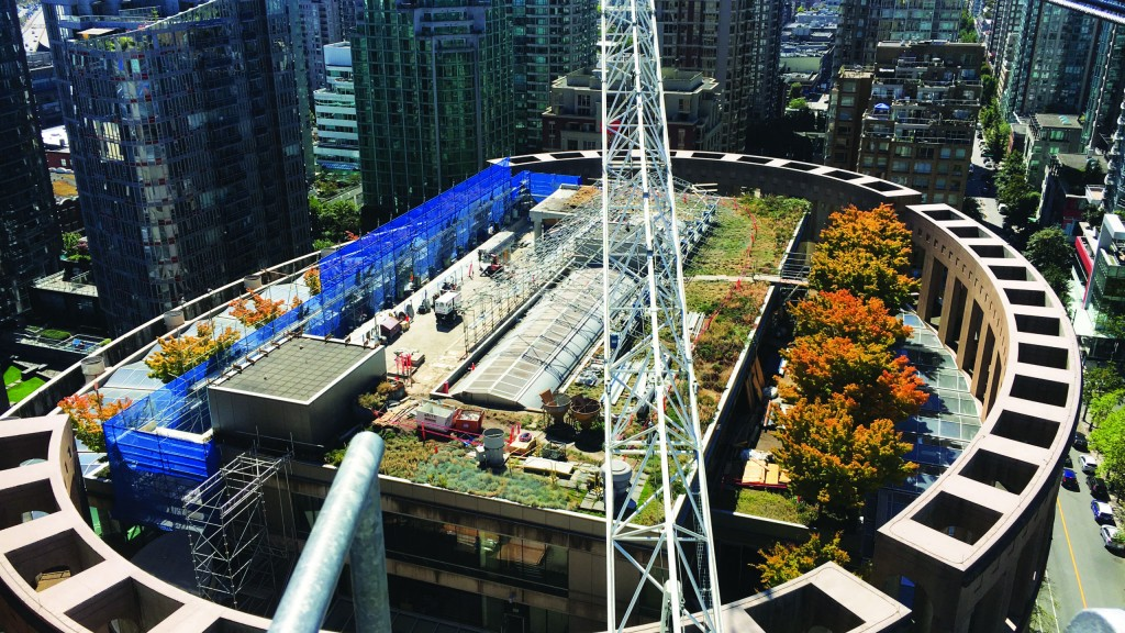 """The Terex CTL 430-24 luffing jib tower crane used for the rebuild of the Vancouver Public Library's upper floors was named """"Citizen Crane"""" by library staff."""