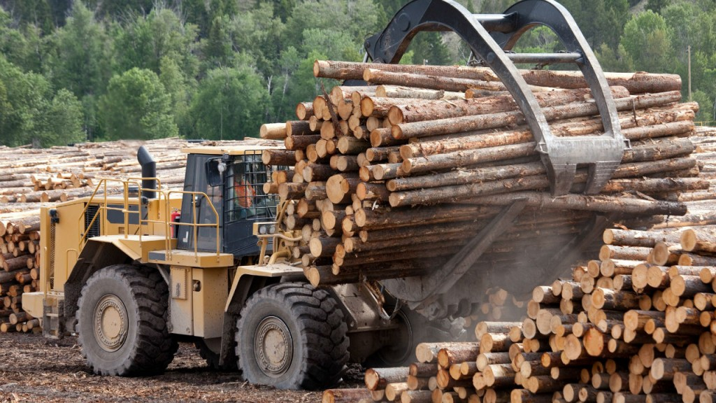 0145/36190_en_a4616_38699_cwwr-log-sort-yard-loader-lumber-mill-web.jpg