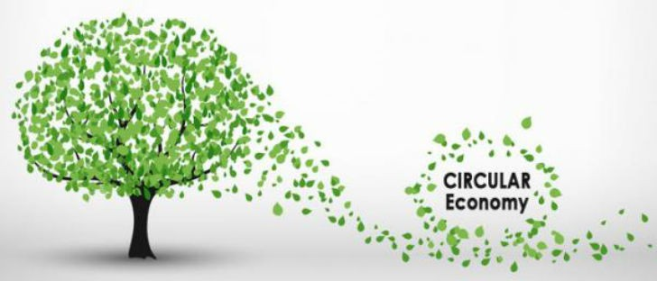 European plastics industry and value chain committed to circular economy and development of closed loop