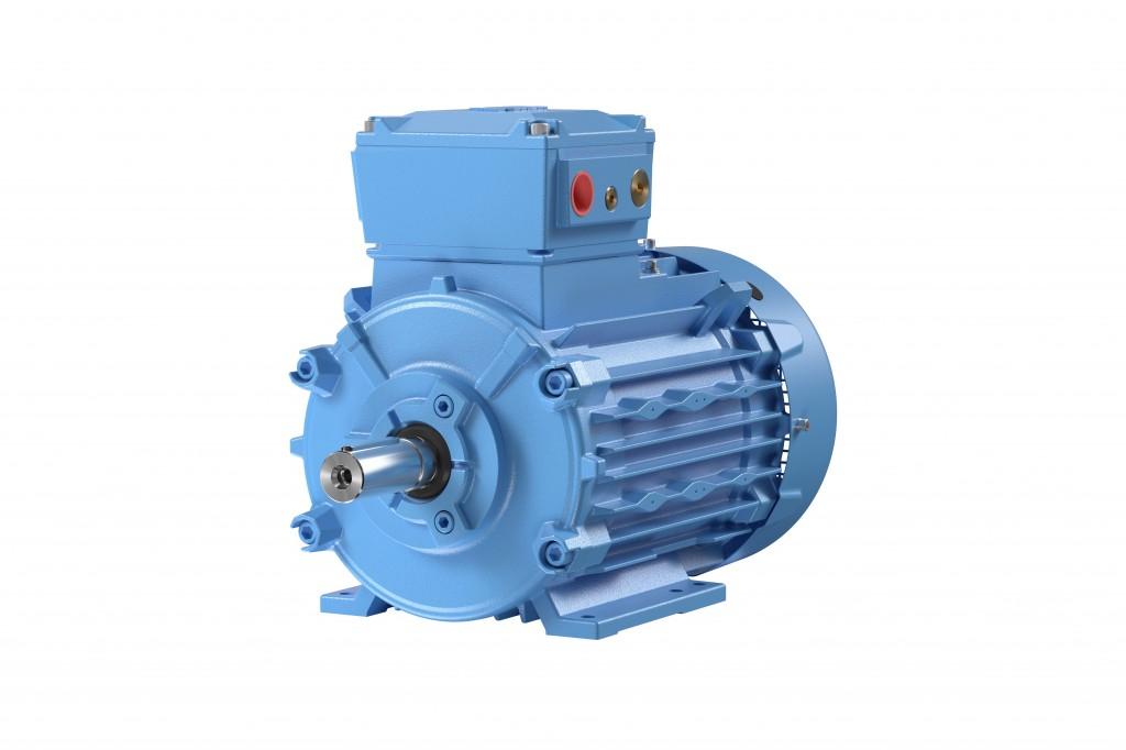 Low voltage flameproof motors