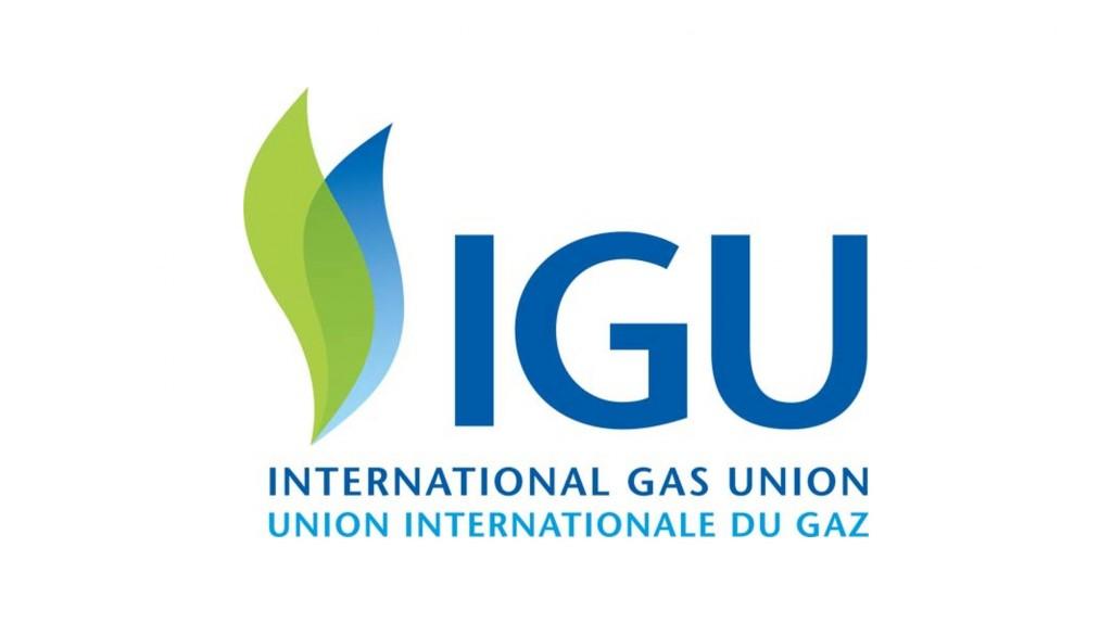 International gas union logo