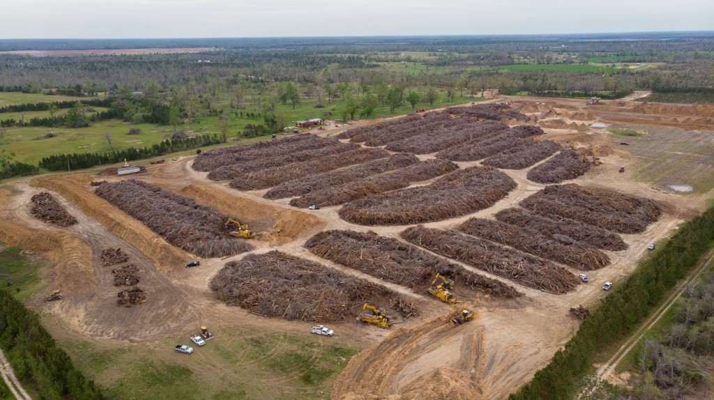 aerial view forests devastated by hurricane being tidied up