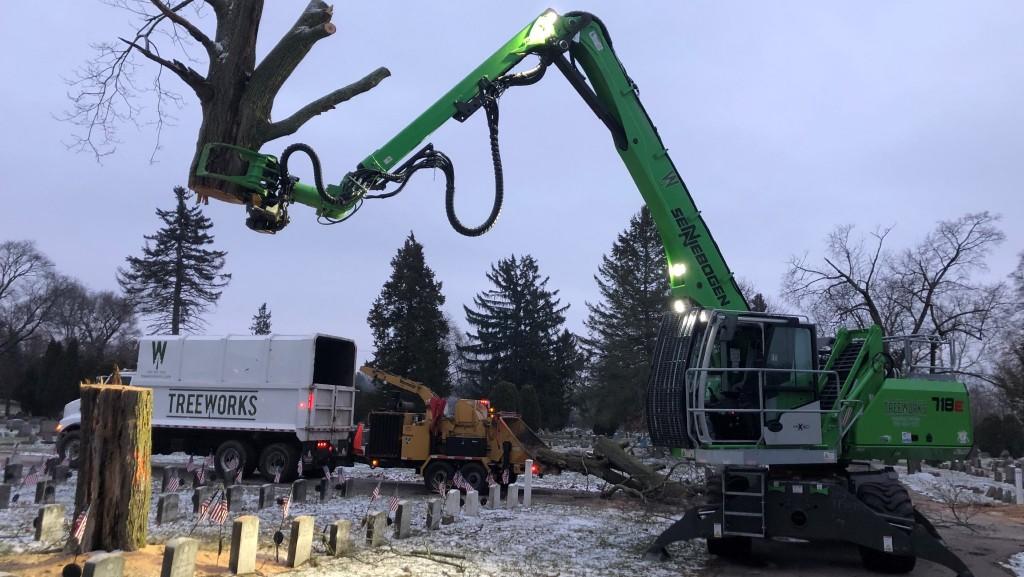 Treeworks on the job.