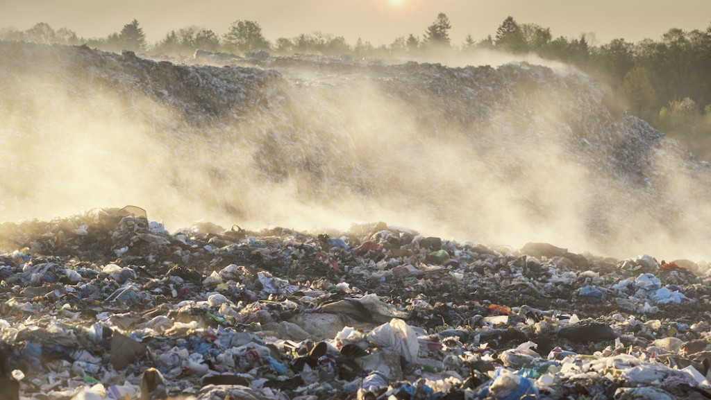 Greyparrot aims to revolutionize recycling with waste recognition software