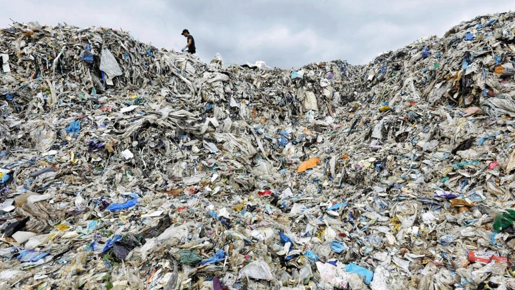 Report finds no corporate leaders when it comes to addressing plastic pollution crisis