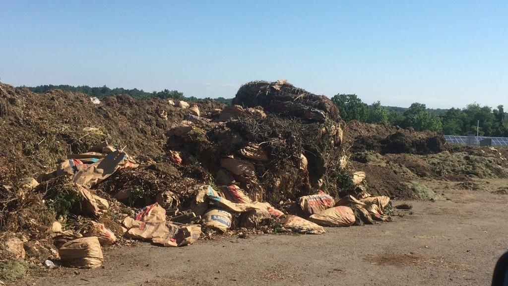 ecoverse lexington mixed organics pile