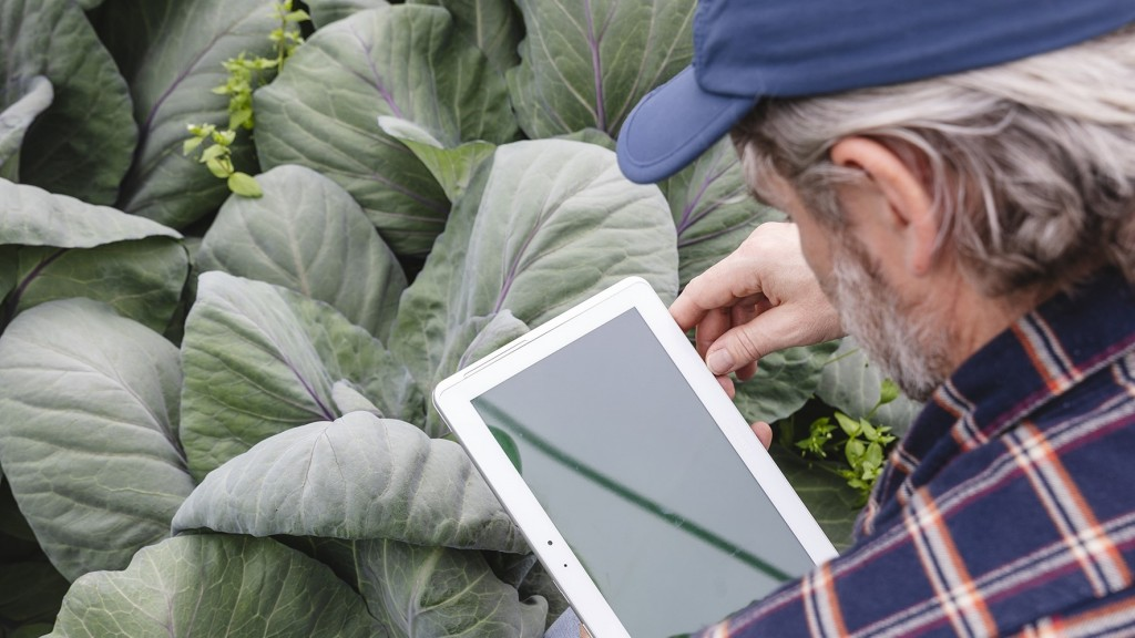 man works on a tablet