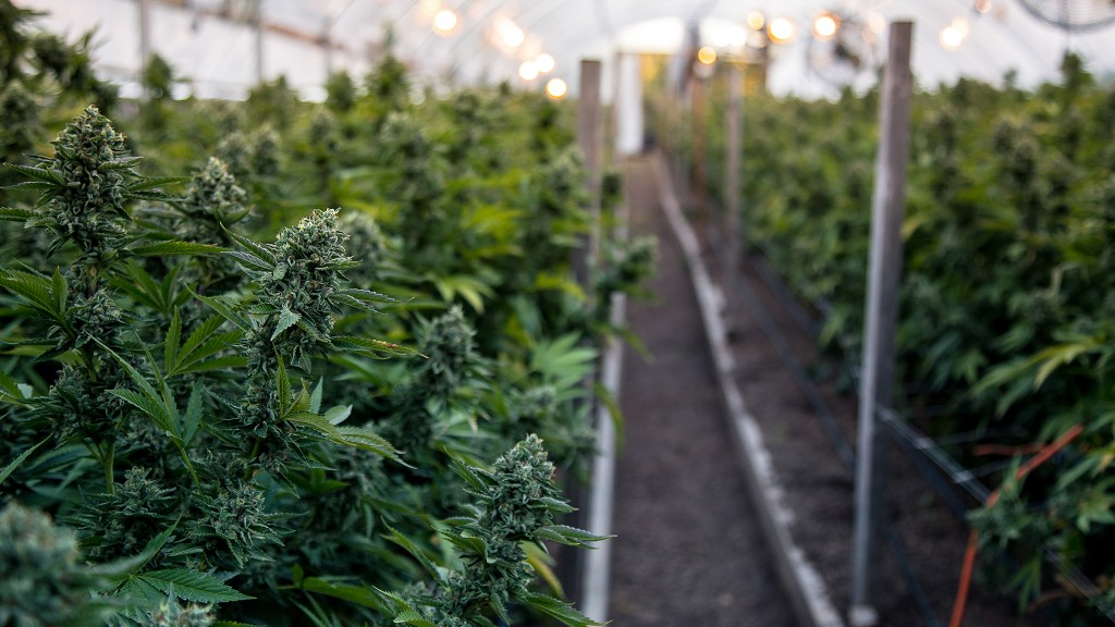 GMT Earth Flow composter key to managing cannabis waste for Flowr