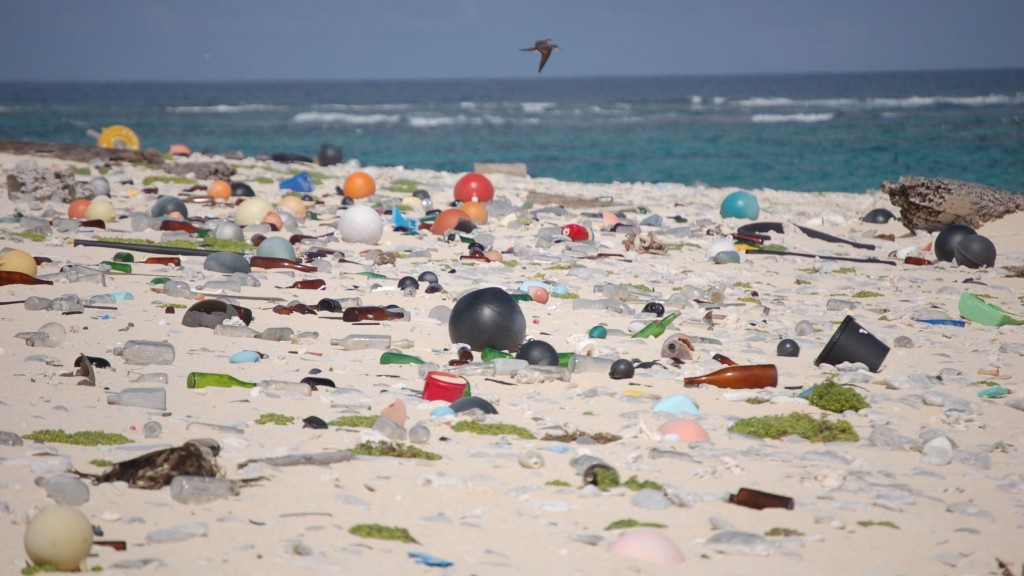a sandy beach covered with plastic objects
