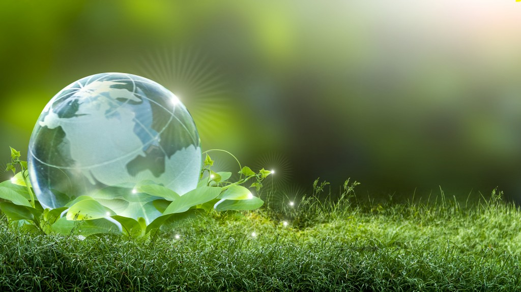 A small earth globe sitting in a bed of grass