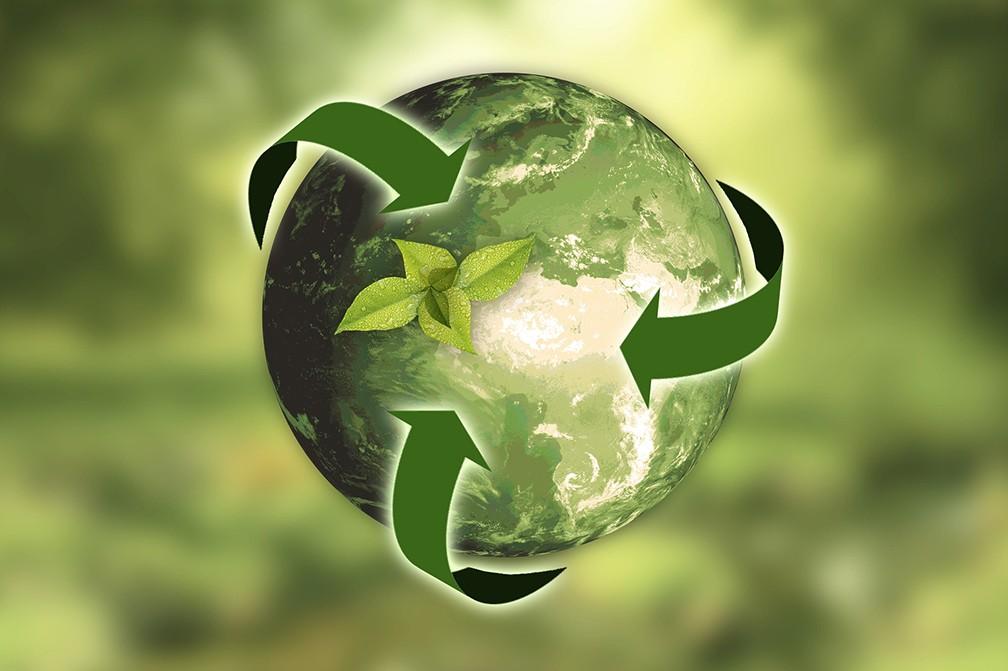earth health circular green economy
