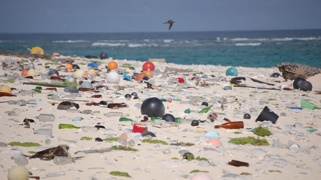A beach full of discarded plastic
