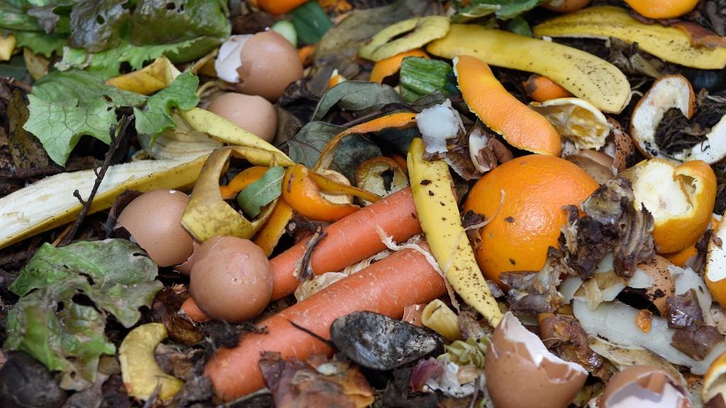 Pile of organic waste