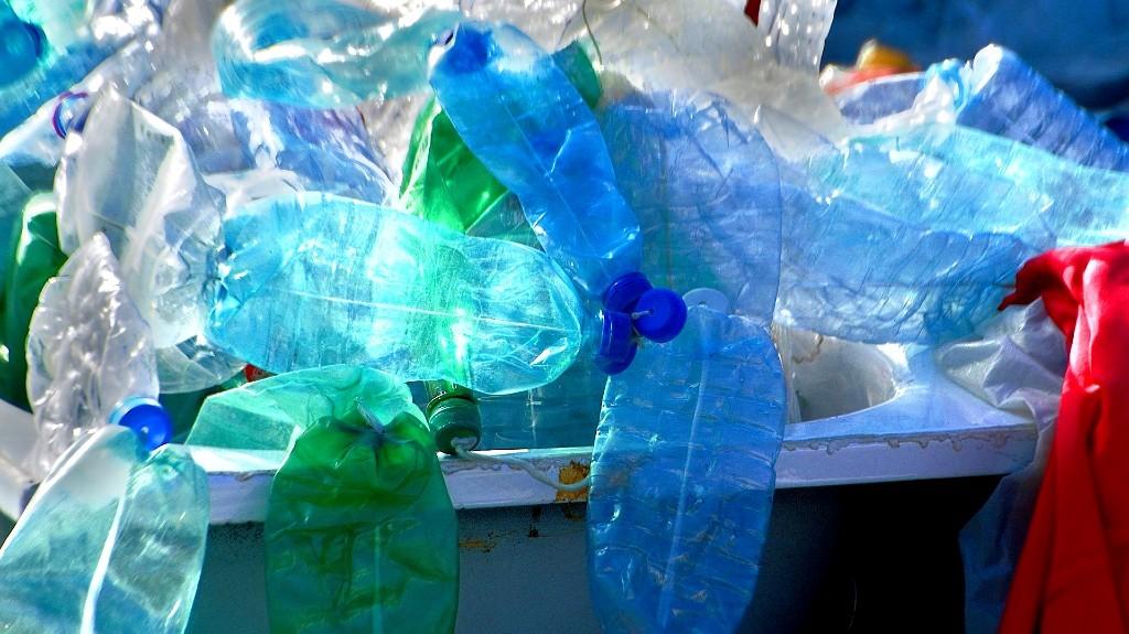 Squished plastic bottles in a blue bin