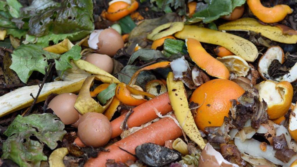 National campaign to address 2.2 million tonnes of avoidable food waste in Canada