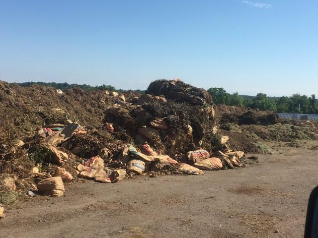 The mixed organics pile in Lexington.